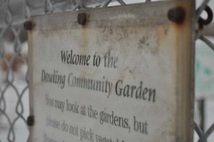 Dowling Community Garden