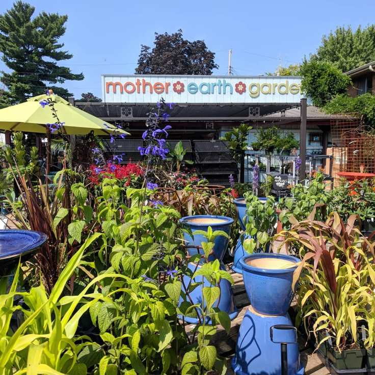 Mother Earth Gardens Summer Day